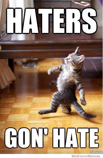 Clic en la imagen para ver su versi�n completa.  Nombre: haters-gonna-hate-cat.jpg Visitas: 54 Tama�o: 35.9 KB ID: 497
